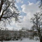 Fruehlingsbeginn-in-Krenglbach-20-03-2021-031