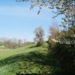 Fast-schon-Mai-in-Oberham-011