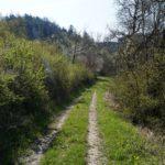 Fast-schon-Mai-in-Oberham-018