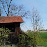 Fast-schon-Mai-in-Oberham-032