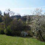 Fast-schon-Mai-in-Oberham-042