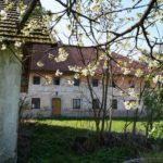 Fast-schon-Mai-in-Oberham-049
