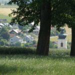 Juni-2021-Krenglbach-025