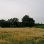 Juni-2021-Krenglbach-088