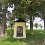 Krenglbach-im-Juli-2021-145