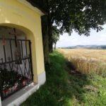 Krenglbach-im-Juli-2021-147