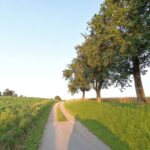 Krenglbach-im-Juli-2021-79